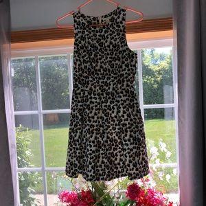 forever21 leopard print dress